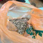 沖縄県中部の西原町にあるコーヒー農園で収穫された生豆